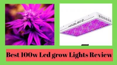 1000w led grow lights review