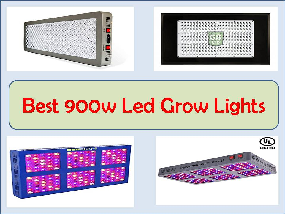 best 900w led grow light