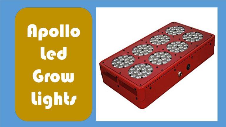 Apollo led grow lights