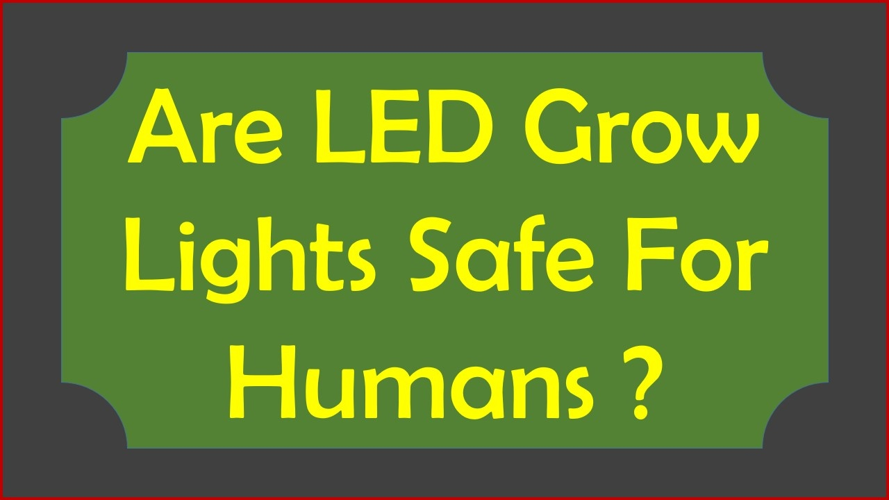 Are LED Grow Lights Safe For Humans