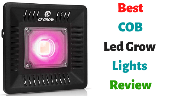 Best COB Led Grow Lights Review