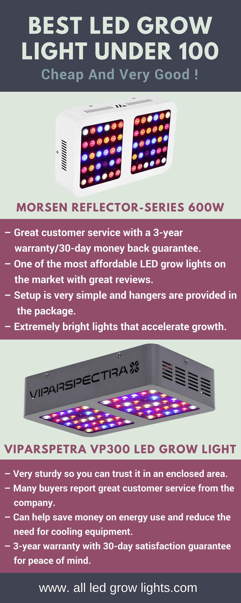 Best LED Grow Light Under 100 info graph