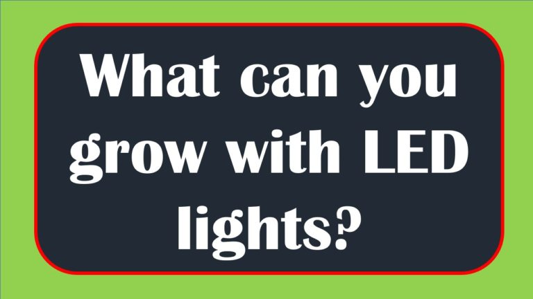 What can you grow with LED lights