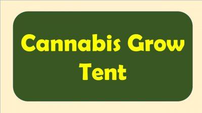 best cannabis grow tent