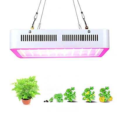 popular grow LED lights review