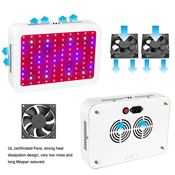 Best LED Grow Lights for the Price