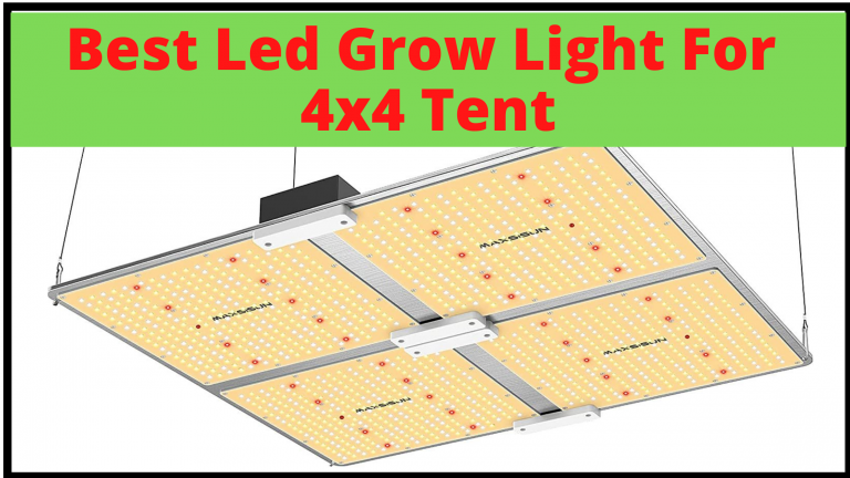 Best Led Grow Lights for 4x4 grow tent