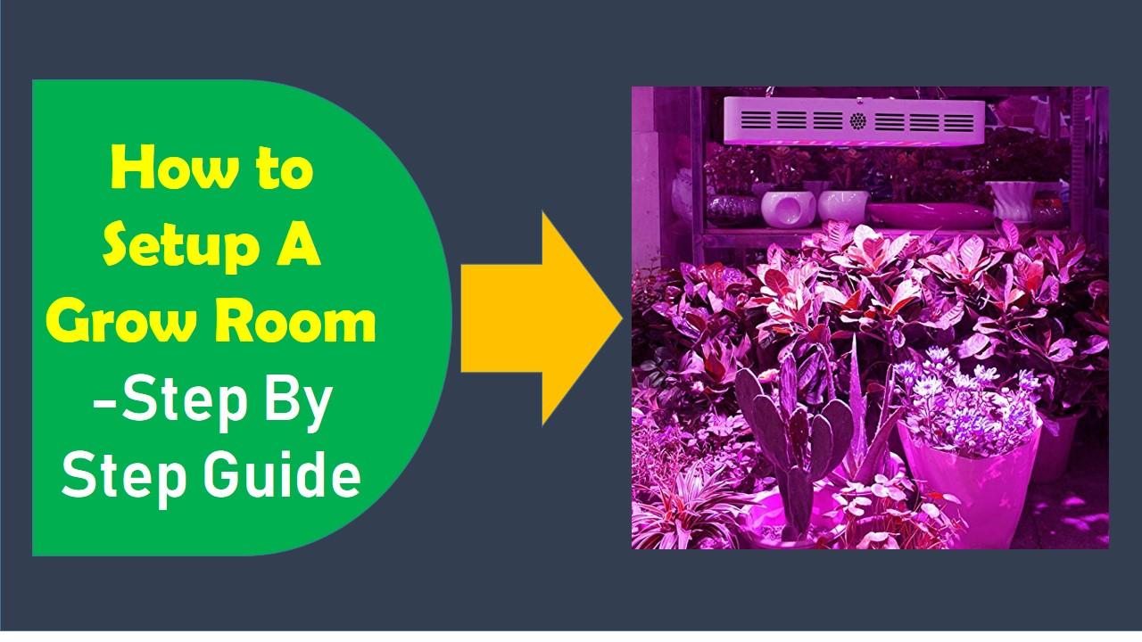 How to setup a Grow Room