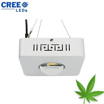 Best 100W LED Grow Light