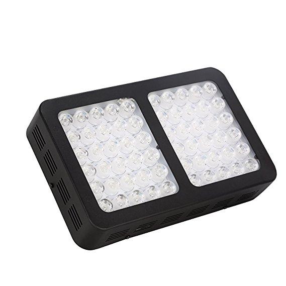Best LED Grow Light For 2x2 Tent