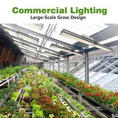 best led grow light for 4x8 tent