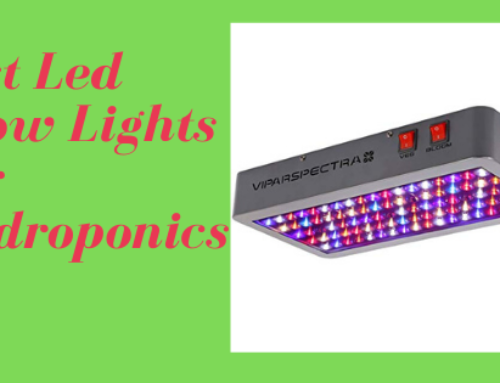 Best Led Grow Lights For Hydroponics 2020 (For Hydroponics Lovers)
