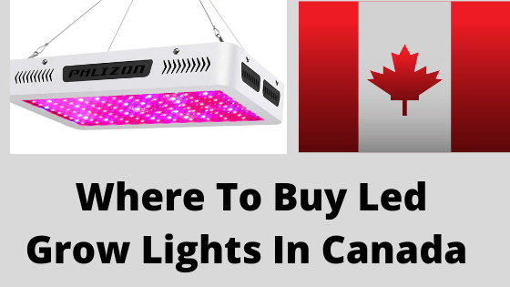 Where To Buy Led Grow Light In Canada