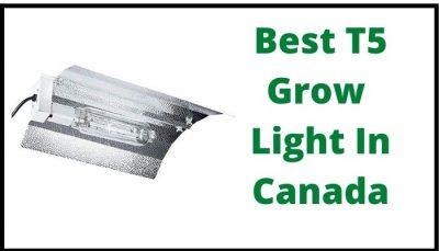 Best T5 Grow Light in Canada
